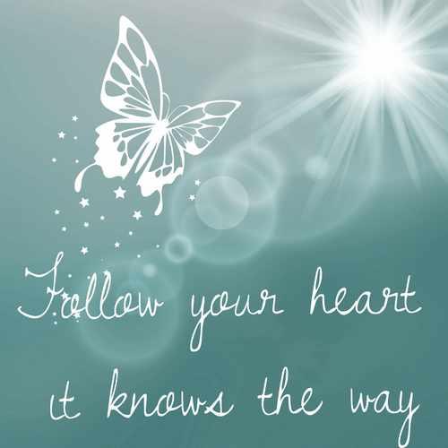 Ein Schmetterling und der Schriftzug Folge deinem Herzen, es weiß den Weg.
